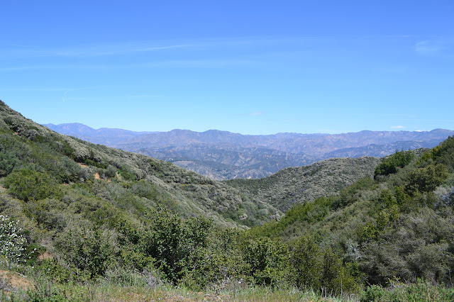 view from Cold Spring Saddle