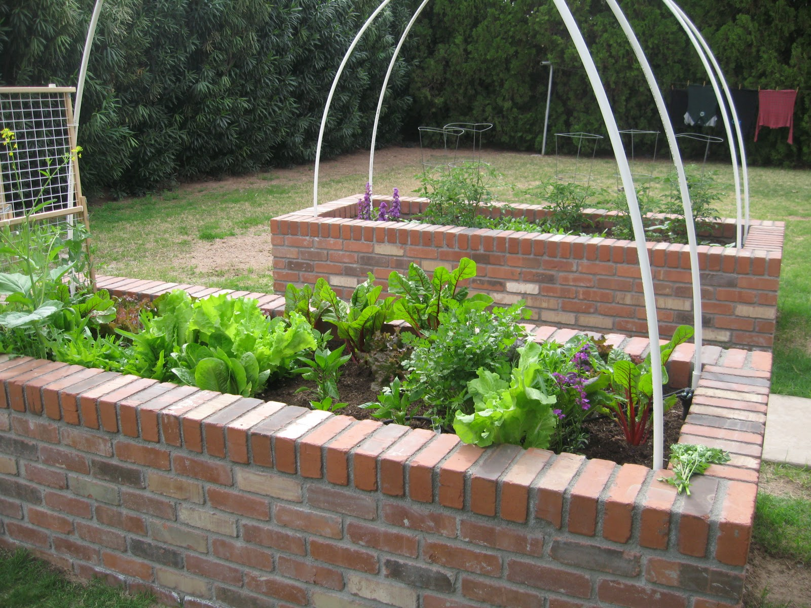 Raised bed garden on pinterest raised beds raised for Raised vegetable garden