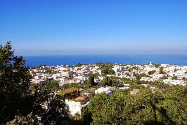 Capri Italy, Aritzia silk tank top T.Babaton, Forever 21 midi skirt, Sam Edelman Serena sandals, Coach handbag