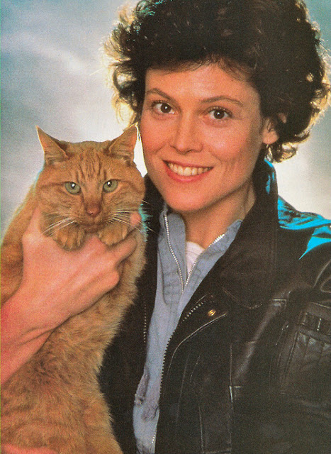 Sigourney Weaver and a cat 1