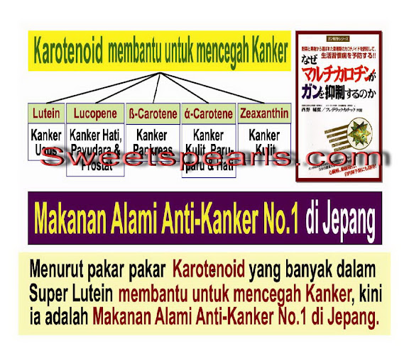 jurnal%252520pengobatan Page 33 Super Lutein Cure Lung Cancer