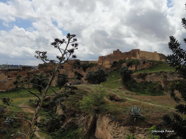 marrocos - Marrocos 2012 - O regresso! - Página 8 DSC07283