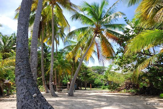 На пляже есть все для отдыха - столики, скамейки, туалет
