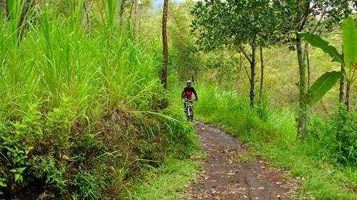 Inilah sedikit gambaran tentang track kami yang sudah memasuki Hutan Wisata Coban Rondo.