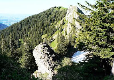 Rückblick auf Steineberg Nagelfluhkette Allgäu