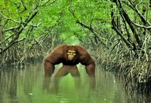 Eerie Accounts Of Swamp Monsters In Louisiana
