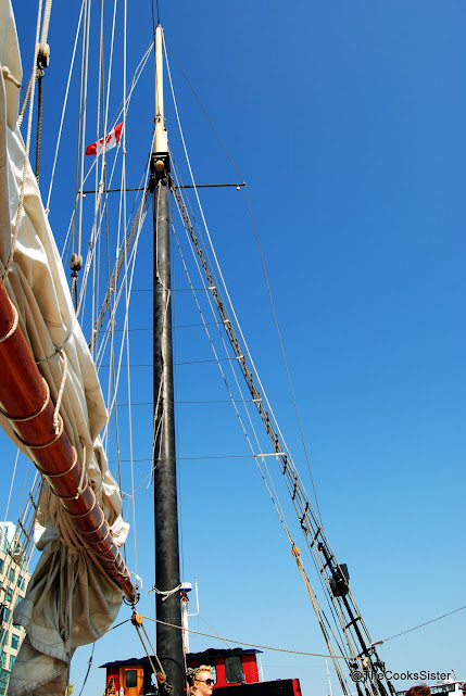 Kajama with its sails down leaving the harbour front