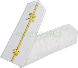 УЗ Погони Середній начальницький склад білі (1пр. 1 зірка)