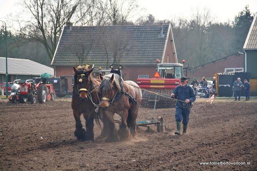 Historische ploegdag   Westerbeek 04-03-2012 (23).JPG
