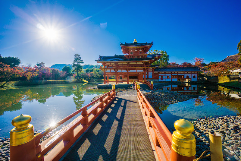 京都 紅葉 平等院鳳凰堂 写真1