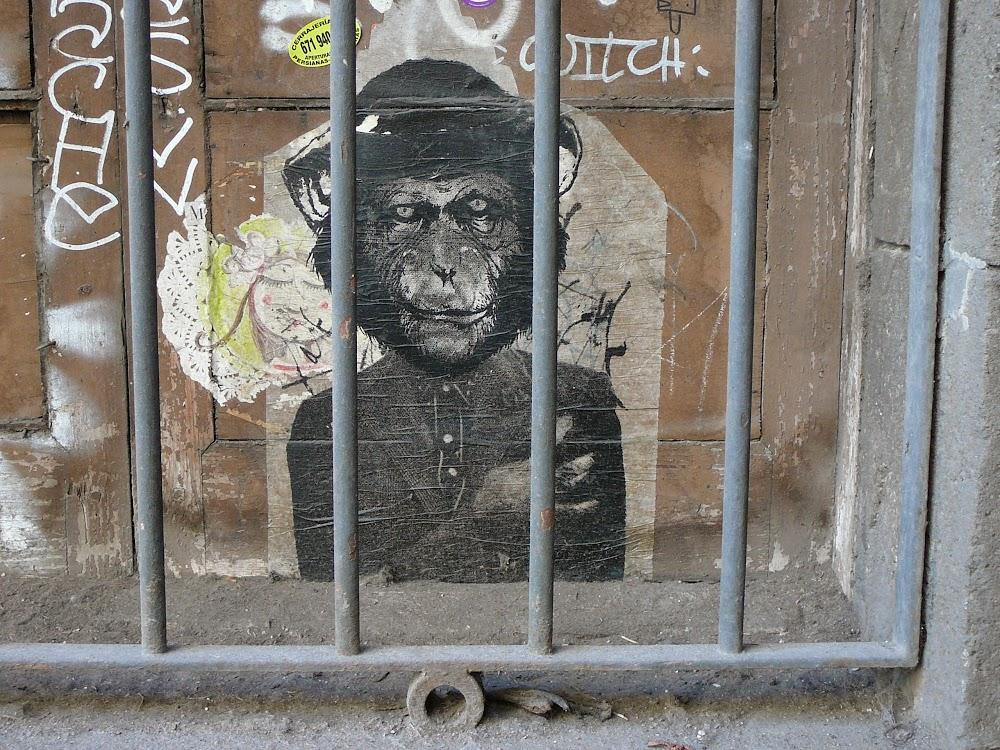 ¡Monos del mundo, uníos!