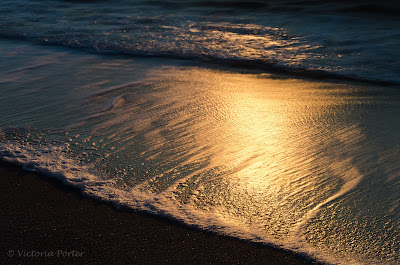 sunlight on ocean waves