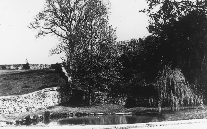 Pond 1905