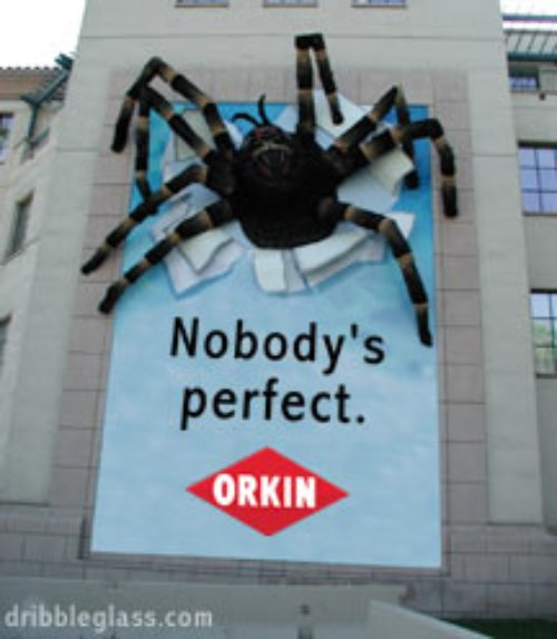 photo of a giant spider climbing out of an Orkin pest control sign