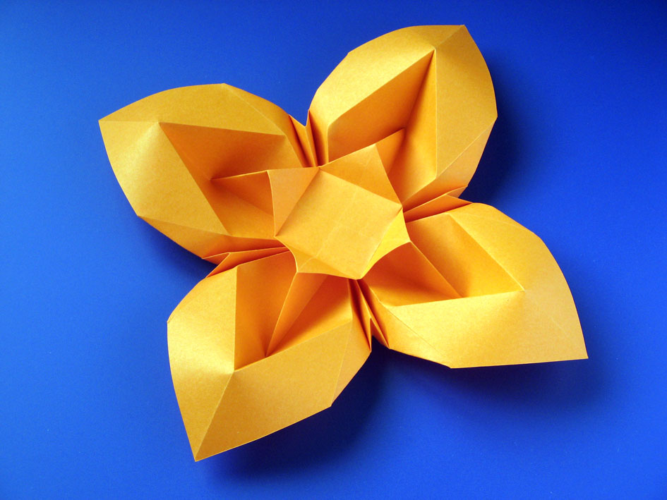 Origami foto Fiore bombato 3 - Curved flower 3 by Francesco Guarnieri