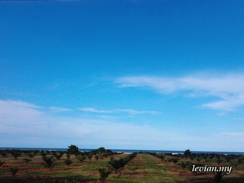 Sky (Samsung Mini)