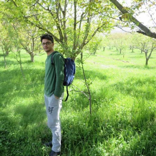 Mansour Ghorbani