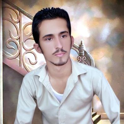 Tehseen Abbas Photo 16