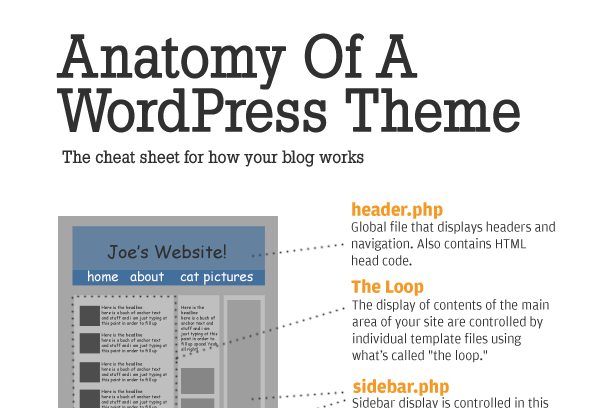 Infographic :The Anatomy of a WordPress Theme
