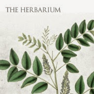 The Herbarium Membership