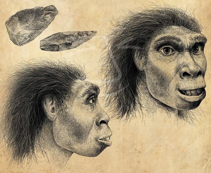 Homo erectus. Ilustración de Stuart Jackson-Carter.