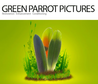 YouTube buys Irish video tech company Green Parrot