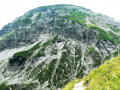 Vilsalpsee Rauhhorn Jubiläumsweg Saalfelder Höhenweg Traualpen