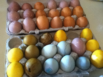 Easter Eggs Dyed With Natural Food Dye