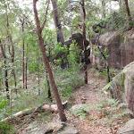 Walking towards Callicoma Caves (154189)