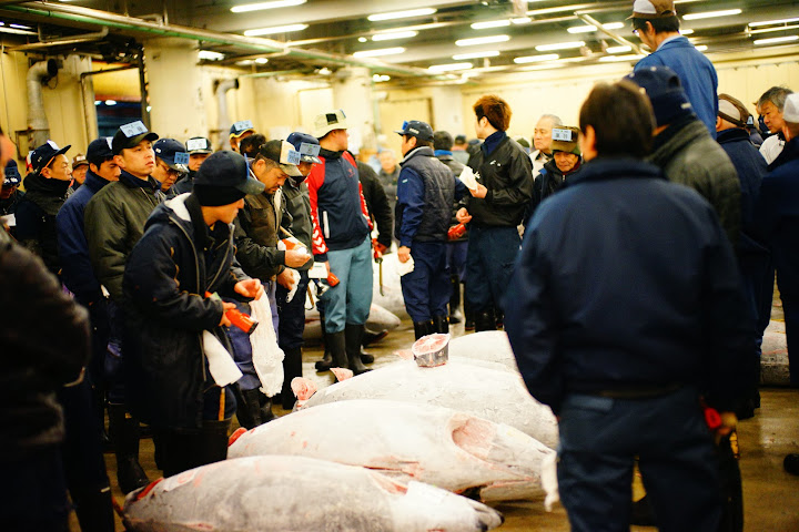names on cap tuna auction