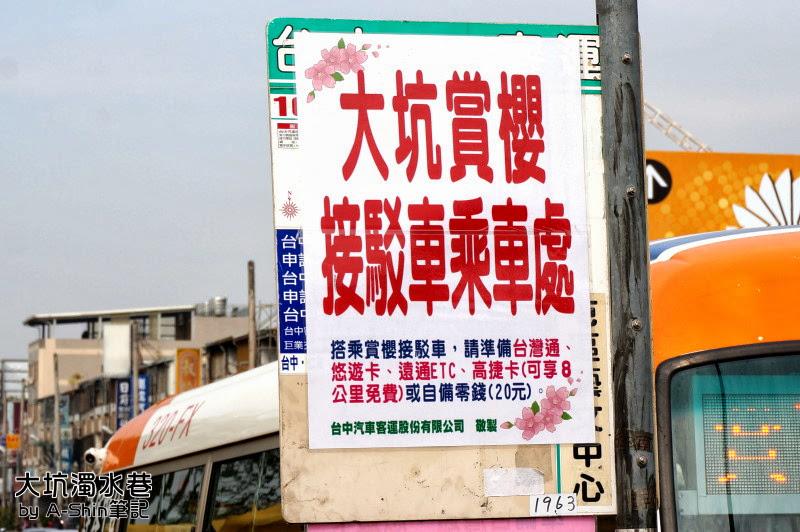 大坑濁水巷|滿山櫻花綻放,大坑濁水巷這賞櫻秘境人越來越多了~阿新也來湊一腳!