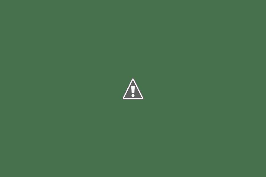 Kết quả hình ảnh cho Mùa xuân ở Hà Giang