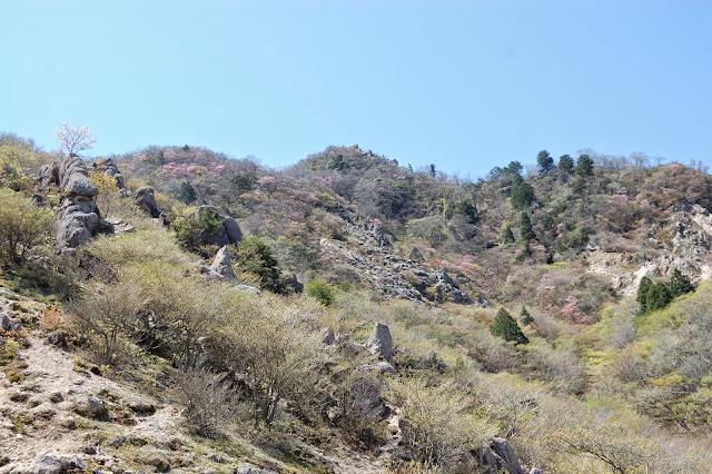 長石尾根から鎌ヶ岳の写真