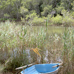 Boat on Digger Cres (30134)