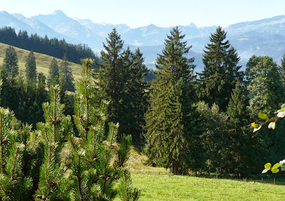 Blick von Terrasse Strausberghütte in die Bergwelt von Oberstdorf Allgäu