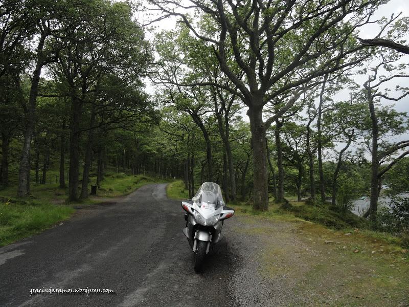 - Passeando até à Escócia! - Página 15 DSC03303