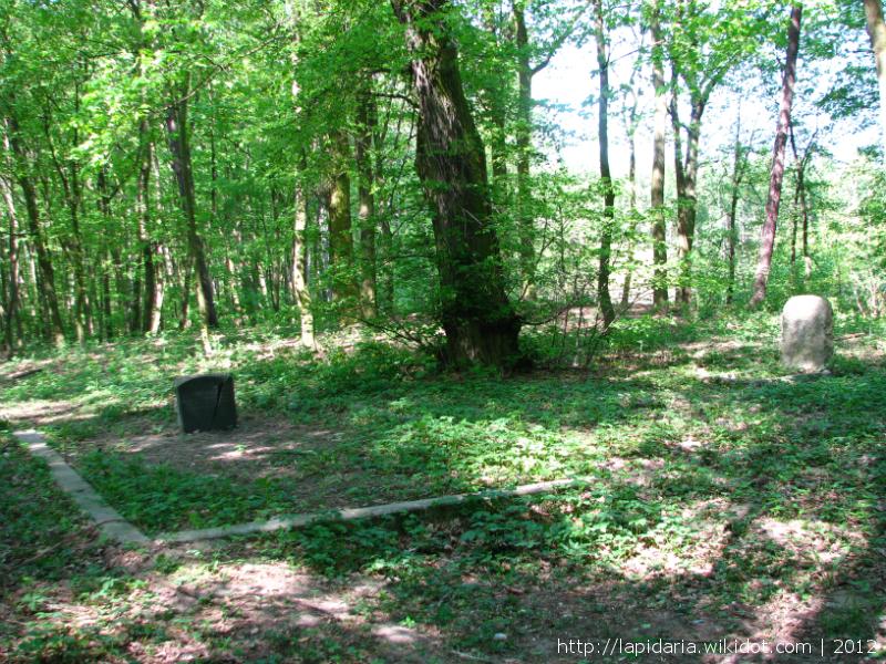 Cmentarz ewangelicki - Zamek Bierzgłowski