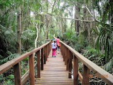 Lekki Conservation Centre Trail Boardwalk