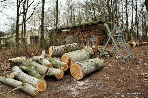 houthakkersmeewerkdag overloon 3-03-2012 (56).JPG