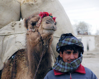 Setting: Mohammad's family was nomadic until ~ 1950, hauling all they owned with camels.