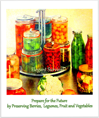 Preserving Fruits, Berries,  Legumes and Vegetables