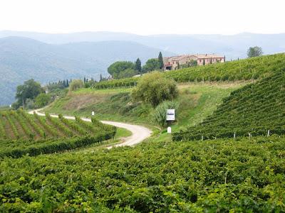 Chianti landscape by Brett Jones
