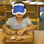 Montessori preschool science emphasizes categorizing materials based on all their attributes, often isolating a specific sense to bring it to the child's closer attention. This girl is paring up matching shapes blindfolded, helping her experience the shells with her sense of touch.
