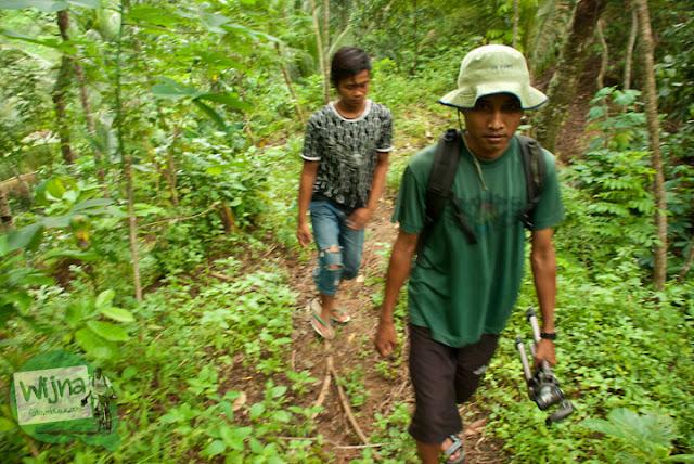 Masuk hutan menuju Curug Kyai Kate, Purworejo