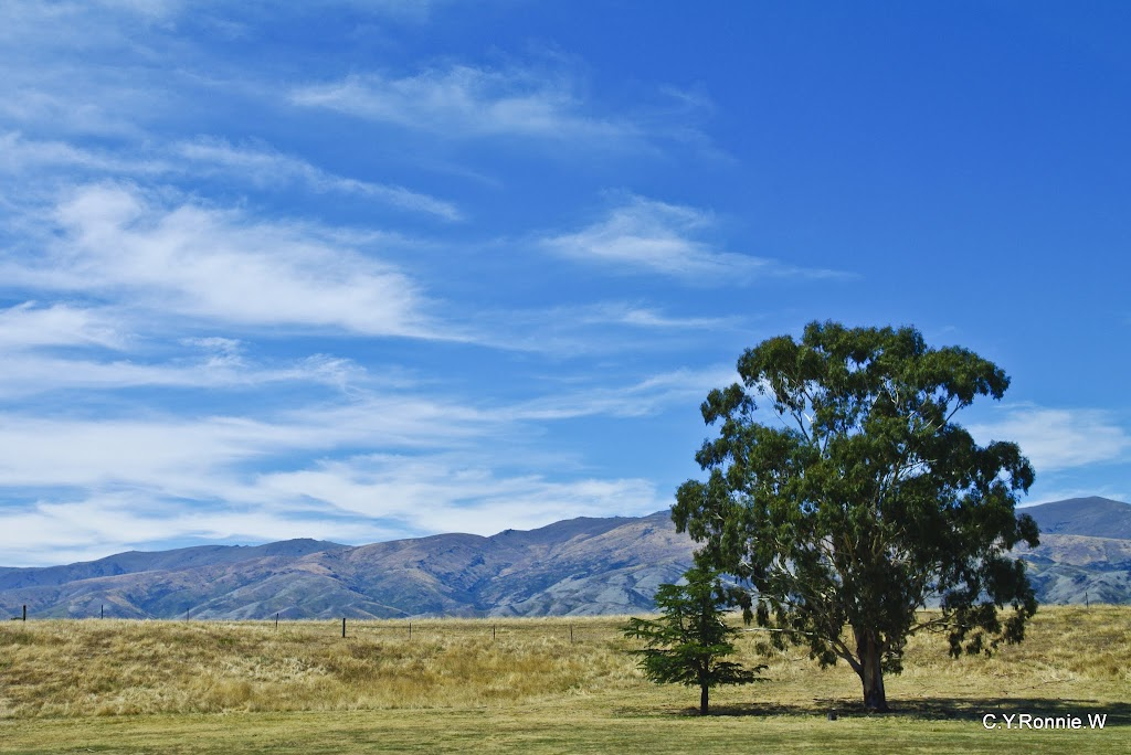 全家紐西蘭過年遊-Part 03