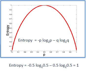 Entropy 1