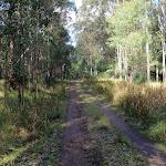 georges road (61631)