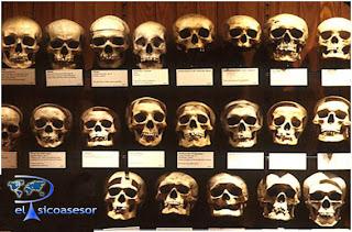 Historia- de- la Psicopatología- en la -Edad- Antigua