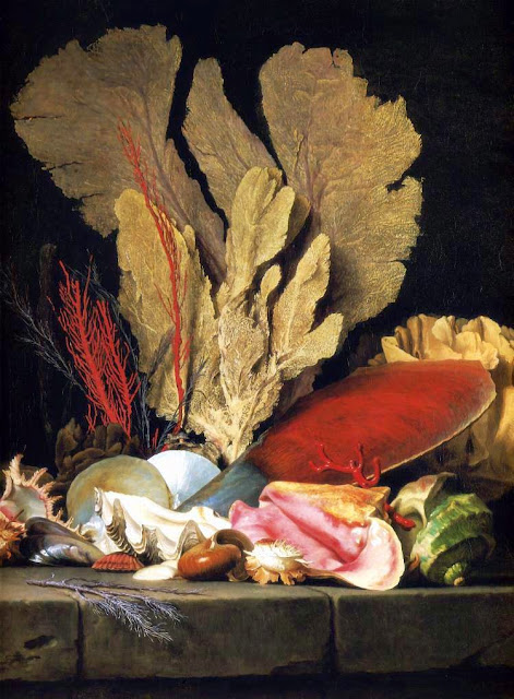 Anne Vallayer-Coster - Still-Life with Tuft of Marine Plants, Shells and Corals