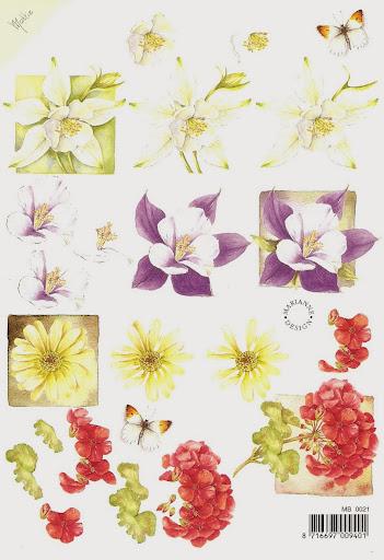 mini flowers.jpg